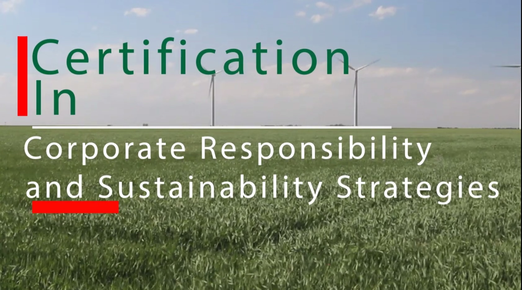 Certification in Corporate Responsibility & Sustainability Strategies CCRSS